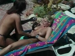 Lesbian babes eat cunt and fuck