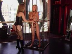Girl removed from cage and whipped