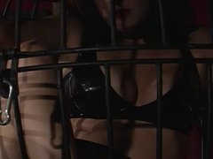 Slut placed in cage and gagged