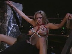Gorgeous Briana Banks deep throats, then gets a nice big dick anal fuck