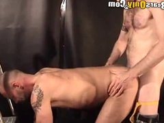 Big Dicked Hairy Bears Hardcore Pounding