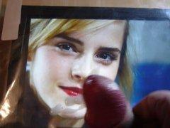 Emma Watson Tribute 33