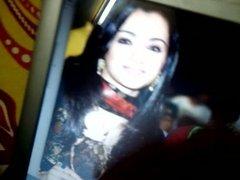 cum tribute on trisha nayan tamana