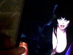 Elvira Tribute - Halloween 2012