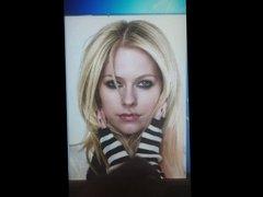 Avril Lavigne Tribute 01