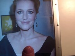 Cum on Gillian Anderson