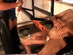 Pierced and tatttooed MILF pumping and sucking pierced cock