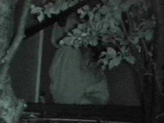 Bench Park Night Outdoor Sex