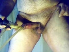 cock milking with machine