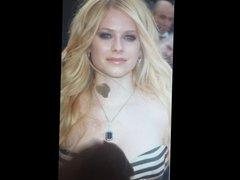 Avril Lavigne Tribute 04