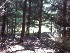 Im Wald bei Stttgart