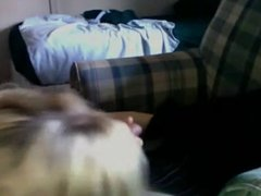 blonde teen suckin cock on sofa