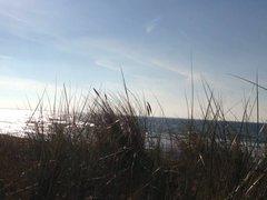 public cumshot beach