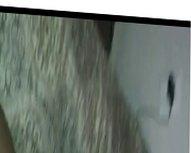 SHAKE DAT ASS 2!!!!
