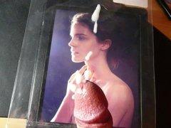 Emma Watson Tribute 52