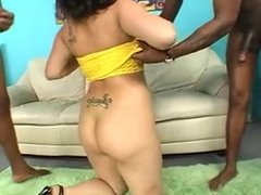 Jasmine BBW Latin