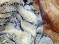twink friend is cumming on his furs