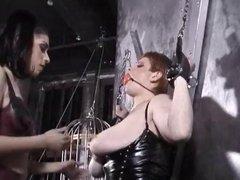 bdsm bondage huge tits