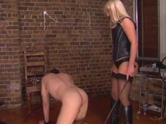 Posh British Mistresses Hurting more slaves