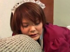 LITTLE JAPAN MAID...che minchiata :))