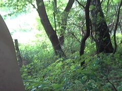 Wichsen im Wald