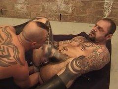 Tattooed Fist Pigs