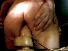 Fat bear fucking huge dildo & has tied up balls