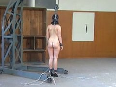 woman subjected to bdsm by WF