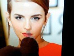 Emma Watson Tribute 3