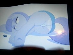 My Little Pony -- I Cum on Maud and She Doesn't Give a Damn
