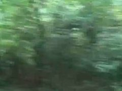 caught jacking off in a forrest by busty lady and she likes