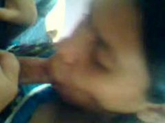 sexy northindian sucking dick hard