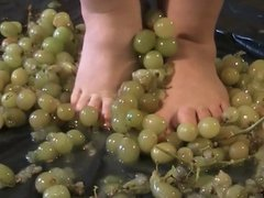 FF24 BBW crushes grapes part 2