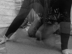 Nylons & Seamless Pantyhose
