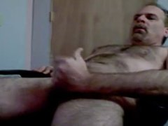 Daddy bear jerking it