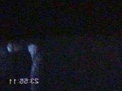 Mates caught at night on window