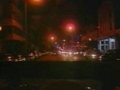 Vintage - Harte Schwaenze in Miami
