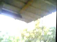 malay- kat kebun durian