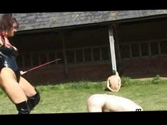 CBT femdom whipping compiliation