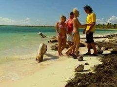 Blondes on a tropical beach