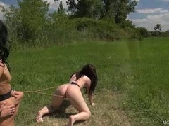 Play Puppy 1 - Nastee - Queensnake.com - QueenSect.com