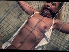 Cute babe caged bound gagged stripped vibed