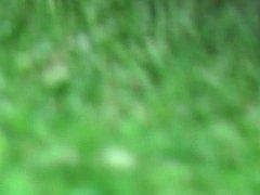 Park upskirt (pantyless)
