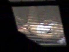 hidden window mast
