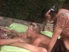 ZB 2195-ALL SEX D2 Movie