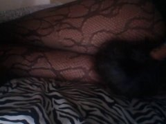 Foxtail Shoving My Stubborn Tail Into My Thighs