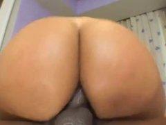 Rosa Brazilan A-hole