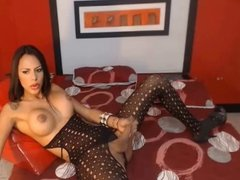 Nice colombian shemale jacking off in front of her webcam