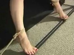 pussy rope suspension  by loyalsock