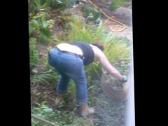 Neighbour in the garden